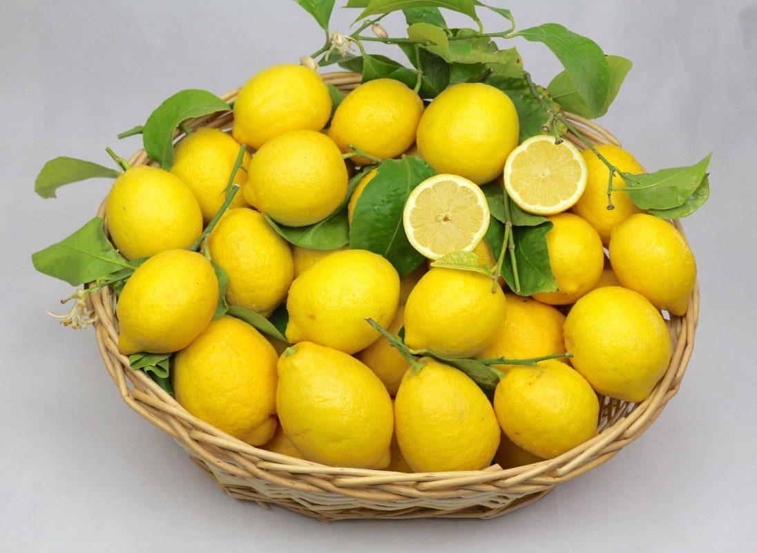 Zitronenbox